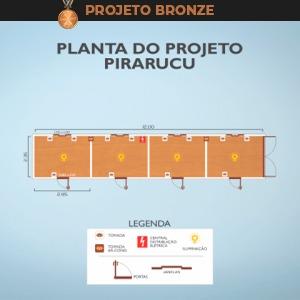 pirarucu-container-bronze