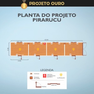 pirarucu-container-ouro